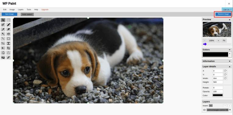 image editor interface
