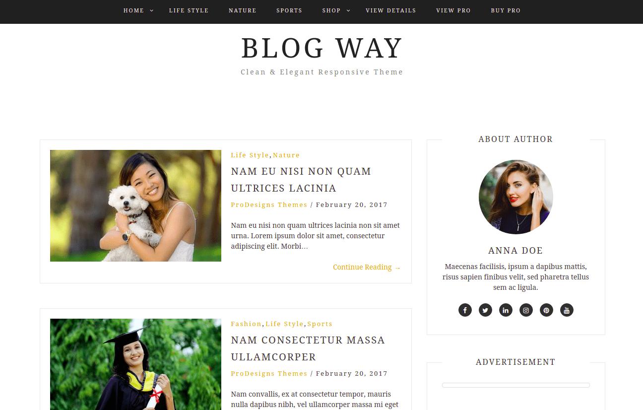 Download Blog Way WordPress Theme, WordPress Themes for Blogs